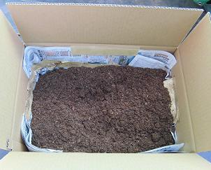 danborucompost1-2
