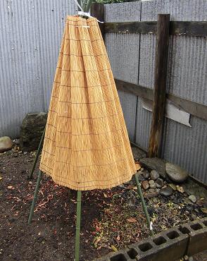 yukigakoi2012