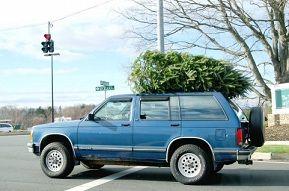 christmas-tree02